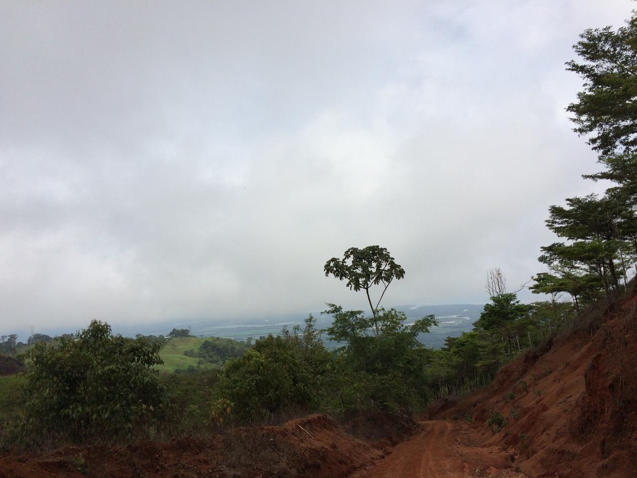 Amazing land