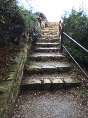 Stairway to goats