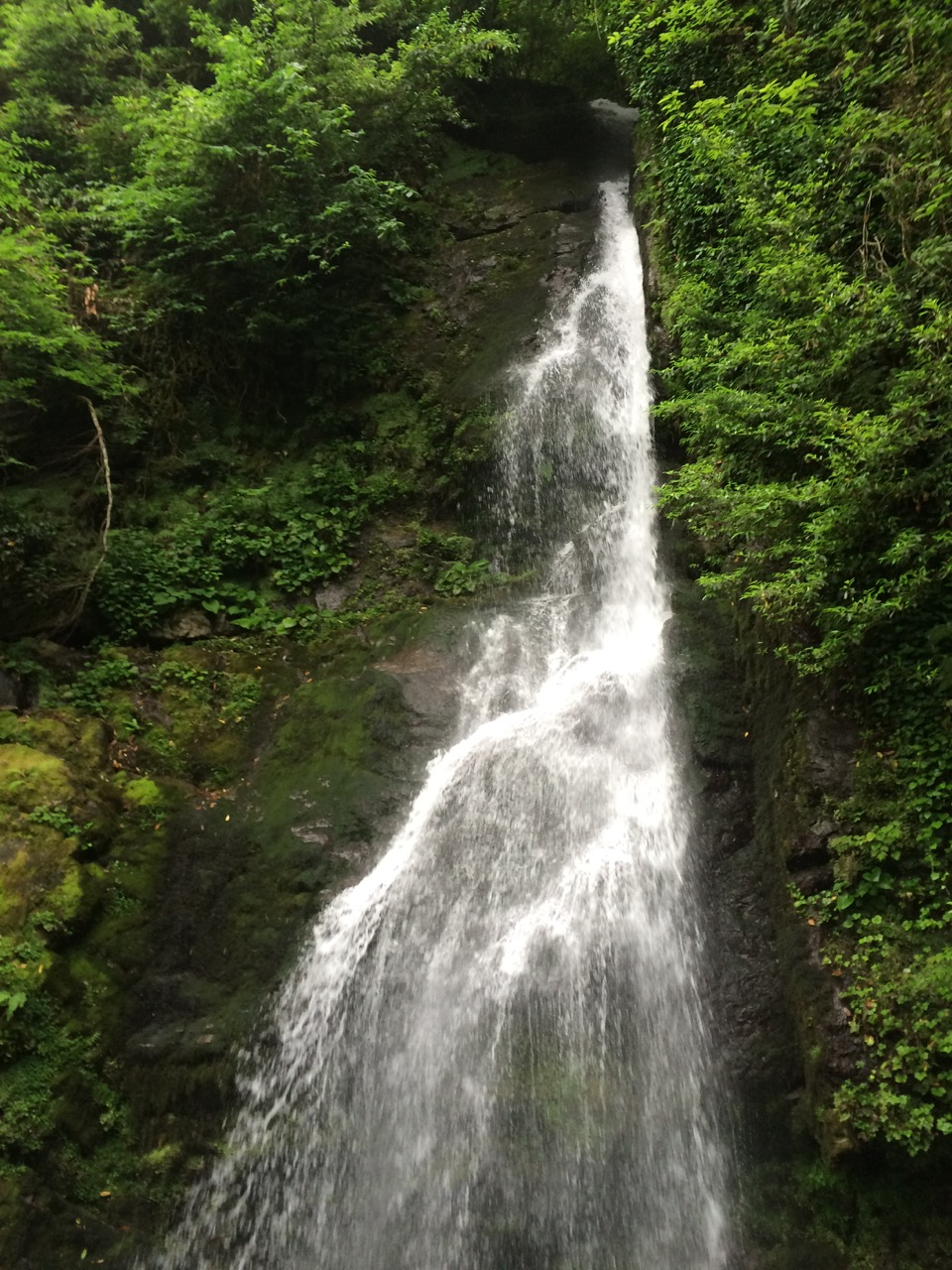 Mtirala waterfall