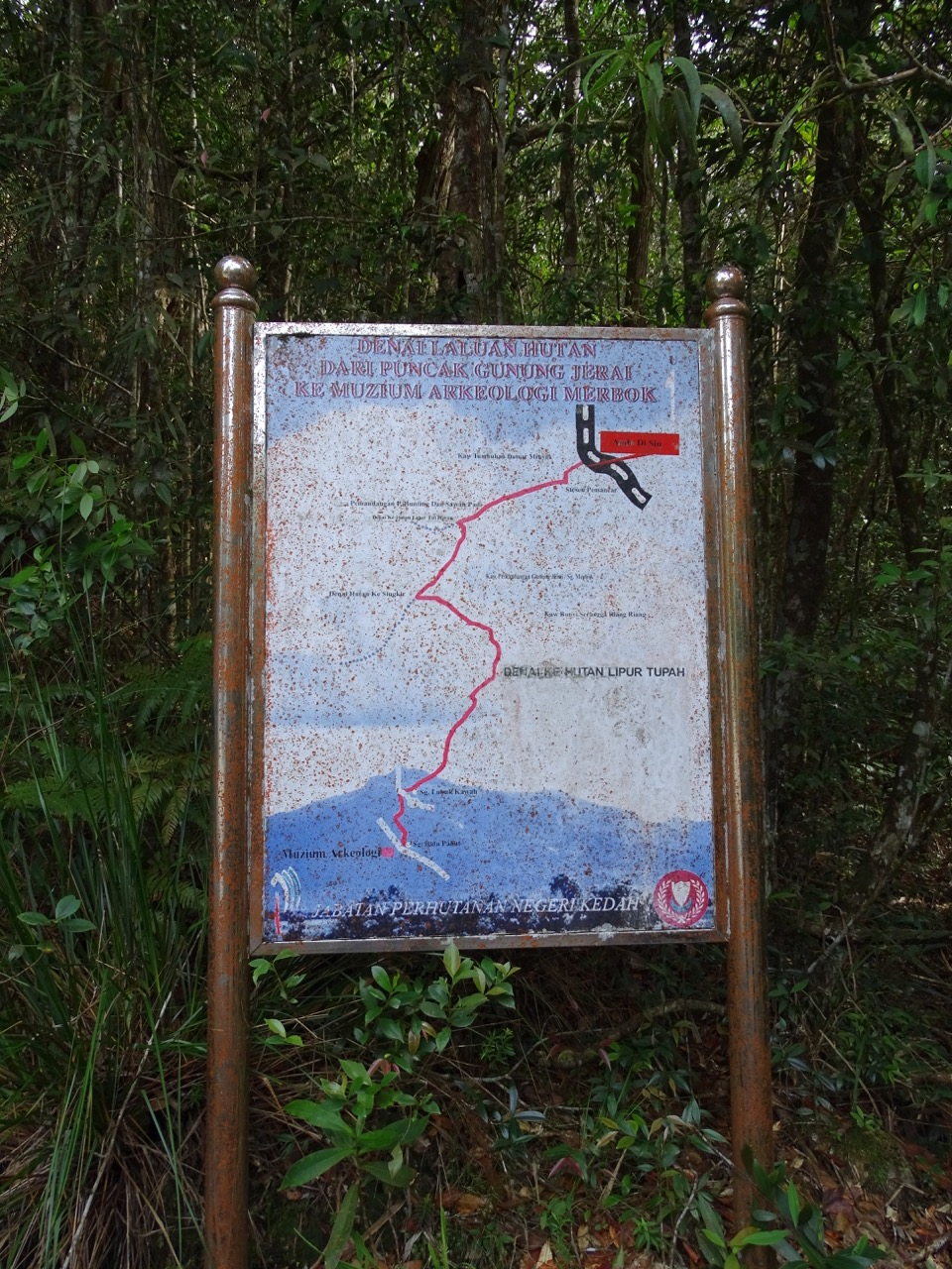 Mount Jerai forest trail