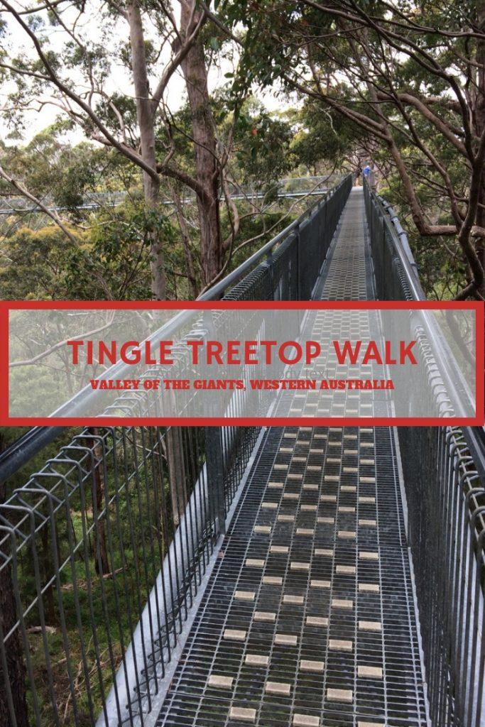 Tingle Treetop Walk
